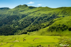Cantal-Puy-Mary-4