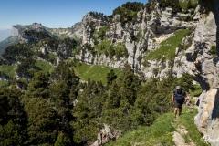 Chartreuse-la-Tour-Percée